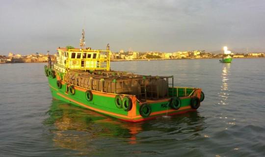 Sem Limites V - Locação de Embarcação